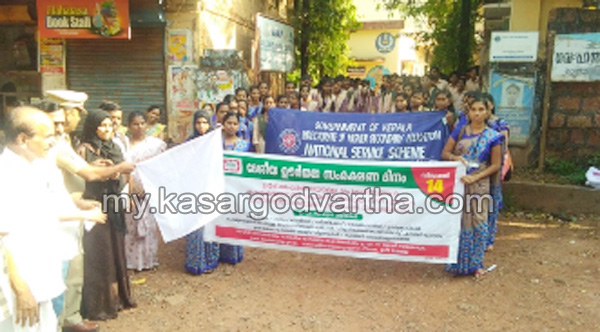 Kerala, News, Awareness rally, Flag off, Energy conservation awareness rally conducted.
