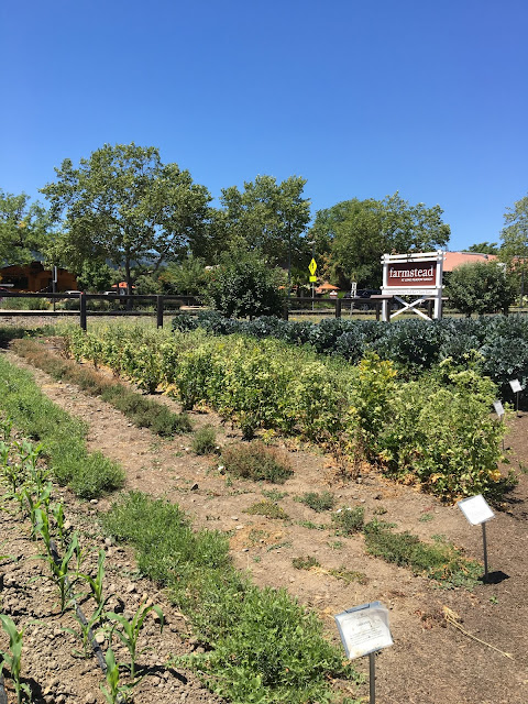 Farmstead garden