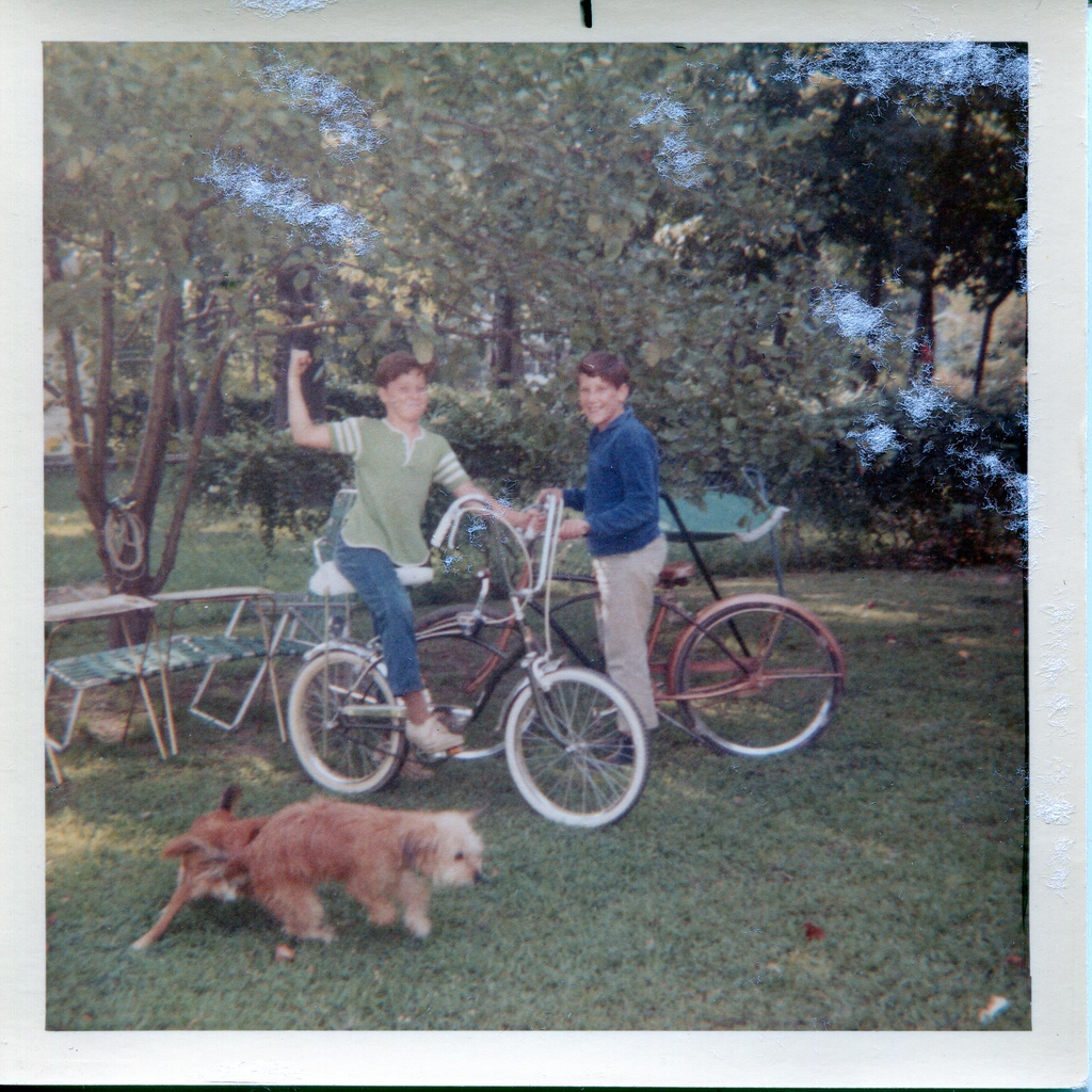 ddcac46cbde ... 1950s Girls Schwinn Bike: Lovely Color Snapshots Of Kids With Their  Bicycles In The