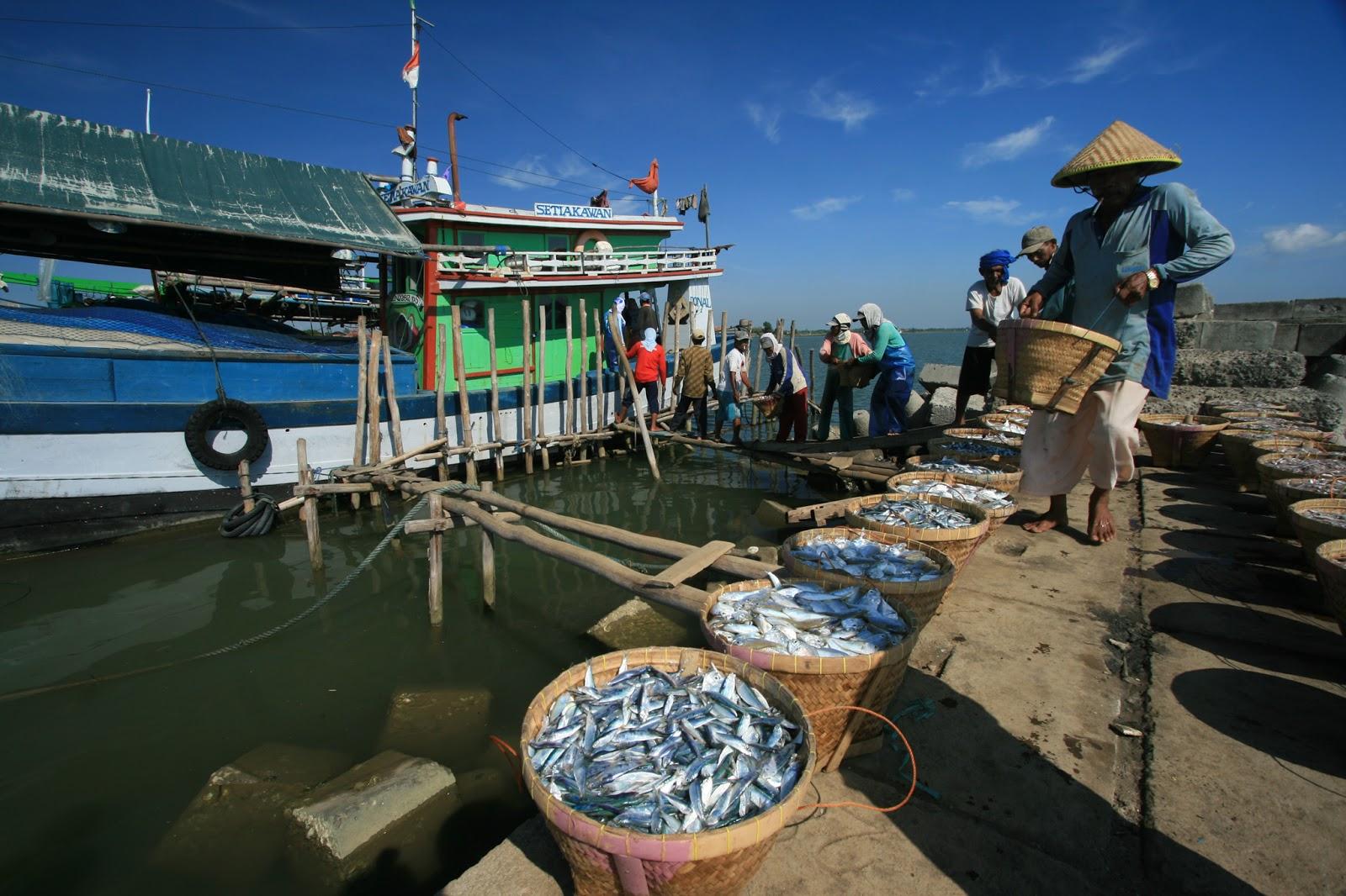 Pemindahan Nelayan Jawa ke Natuna untuk Penguatan Ekonomi ...