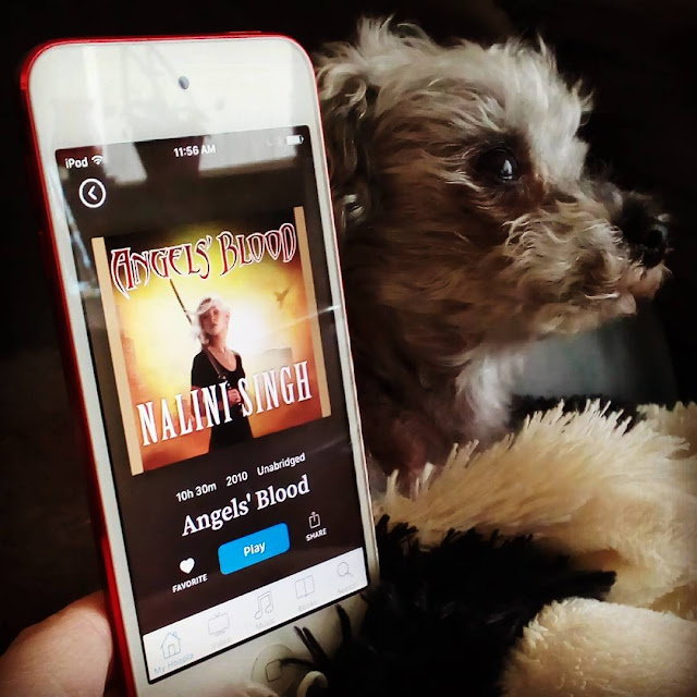 Murchie strikes a heroic pose behind a white iPod with the cover of Angels' Blood on it. The cover features a dark-skinned, silver-haired woman with a sword resting over her shoulder. She stands against a glowing yellow and orange background.