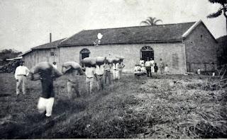 Engenho de beneficiamento de arroz, em 1933.