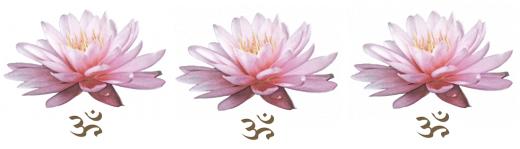 lotus thaimassage thai massage guiden
