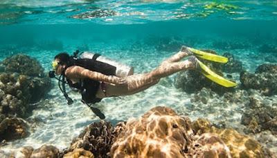Raja Ampat, Papua, El buceo en Raja Ampat, submarinismo, de vacaciones en Raja Ampat, Luna de miel,