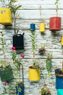 tin cans repurposed into wall hanging with plants Photo by Bernard Hermant on Unsplash