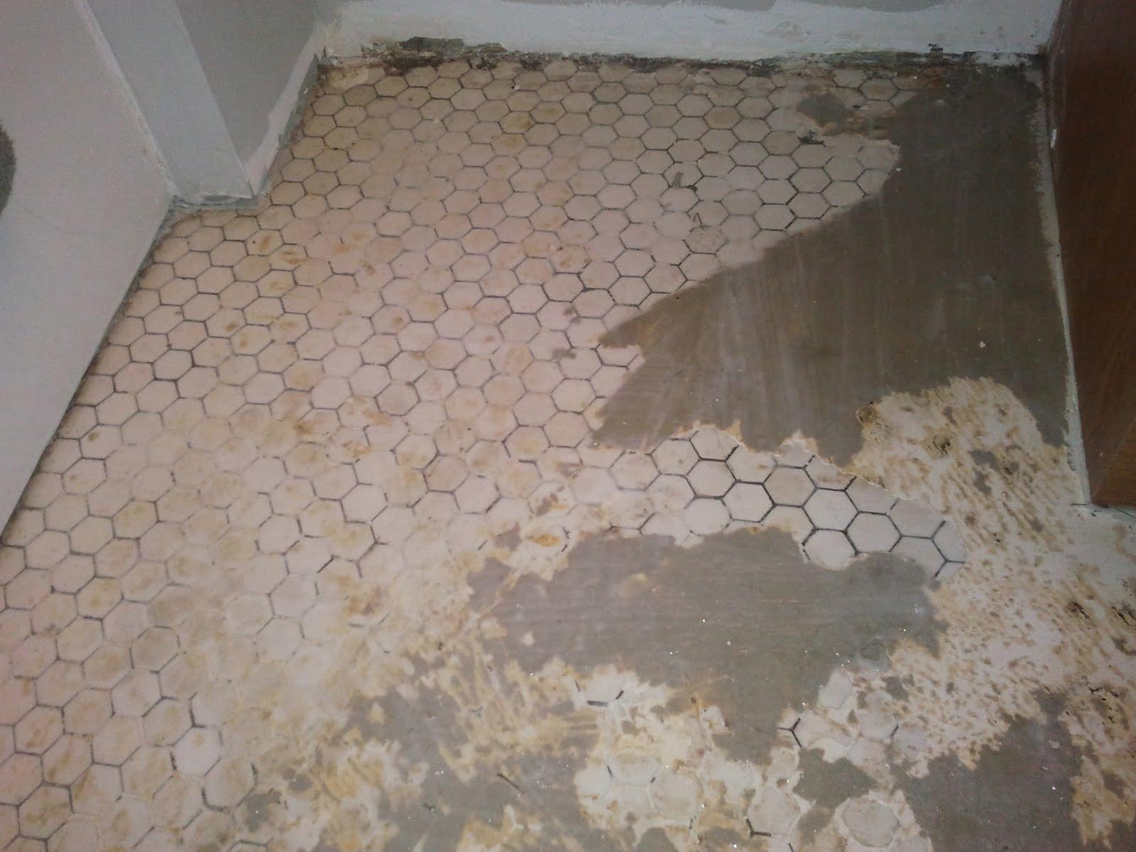 Elegant Can I Put Vinyl Flooring Over Tile Freshomedaily