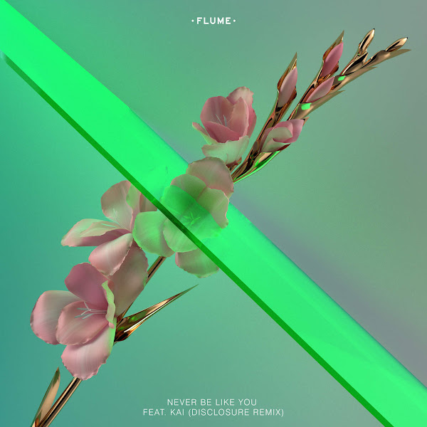 Flume - Never Be Like You (feat. Kai) [Disclosure Remix] - Single Cover