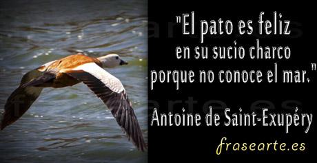 Frases famosas de Antoine de Saint-Exupéry