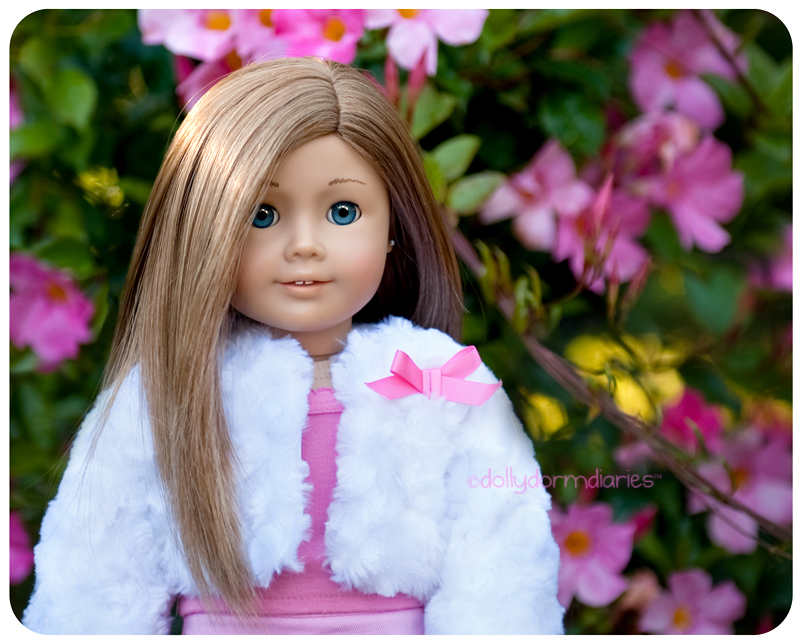 Meet our American Girl doll, Christina. Read 18 inch doll diaries at our American Girl Doll House. Visit our 18 inch dolls dollhouse!
