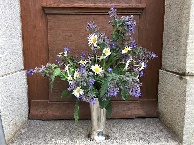 Blumenstrauss mit blauen Borretschblüten und weissen Margriten
