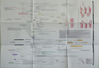 Ischemic Stroke Concept Map Folded Poster