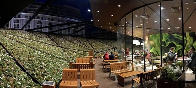 taman dalam restoran mcdonalds