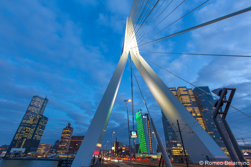 Erasmus Bridge Rotterdam Things to Do