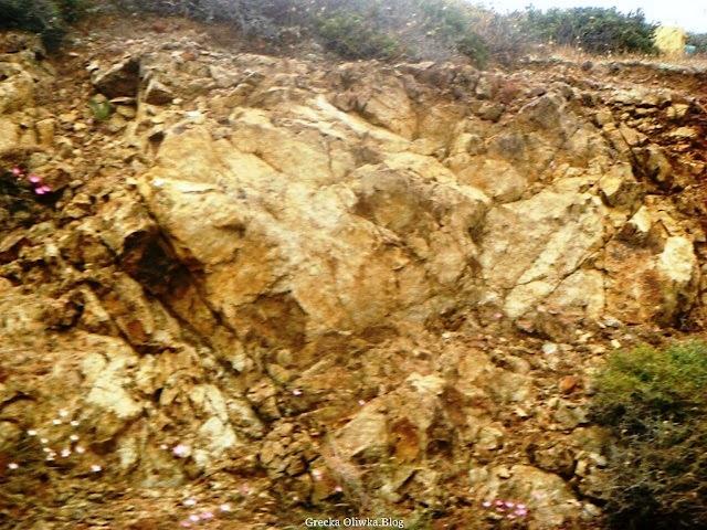 skała, pareidolia,