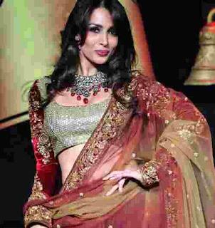 lehenga blouse designs images