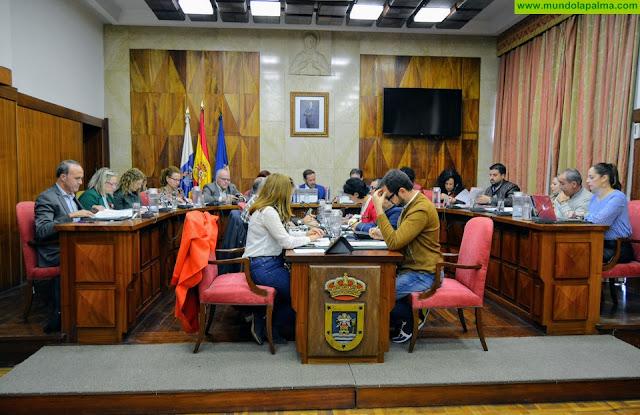El Pleno aprueba una Declaración Institucional de apoyo a las personas con Daño Cerebral Adquirido