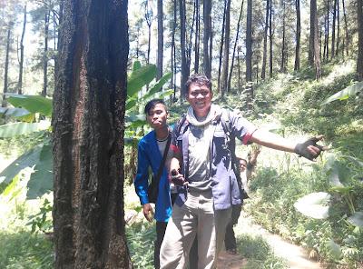 Melewati hutan pinus saat ke curug duwur