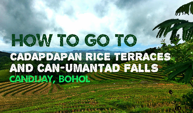 How to go to Cadapdapan Rice Terraces and Can-Umantad Falls in Candijay Bohol
