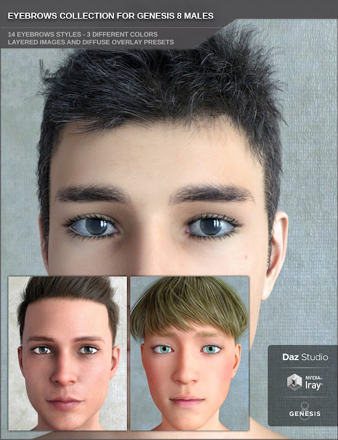 DAZ 3D - Eyebrows Collection for Genesis 8 Male