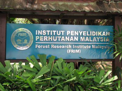 jawatan kosong institut penyelidikan perhutanan malaysia
