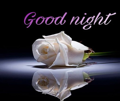 Good Night Flower Image on Love