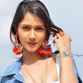 Krissann Barretto Biography Age Height, Profile, Family, Husband, Son, Daughter, Father, Mother, Children, Biodata, Marriage Photos.
