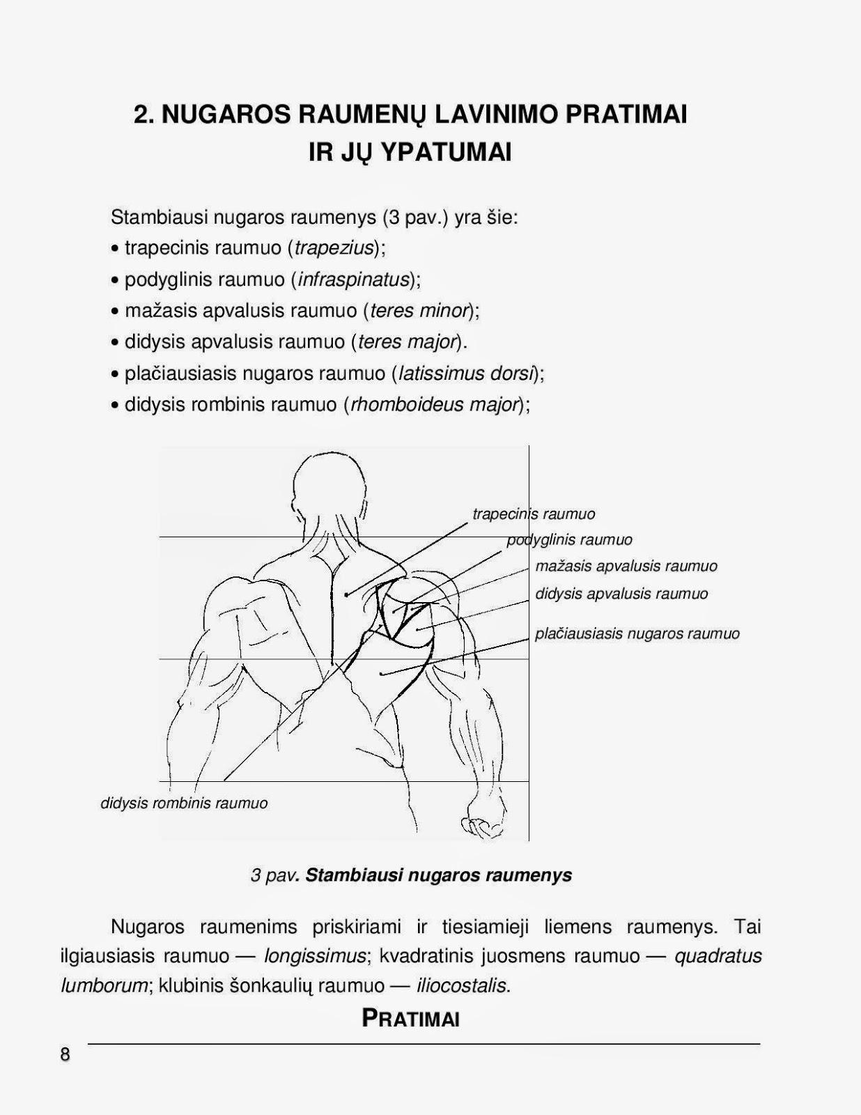 Nugara | Pratimai raumenims