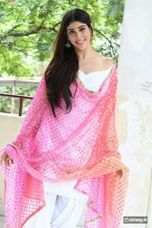 Aditi-Singh-Stills-at-Guppedantha-Prema-Pressmeet