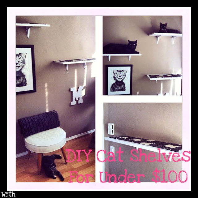 DIY Cat Shelves For Under $100 Series Part 1