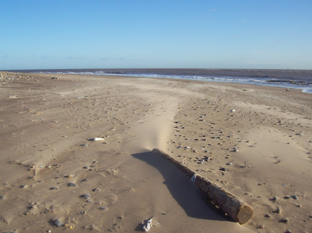 Ancient settlements 'lost to the sea' discovered in Yorkshire