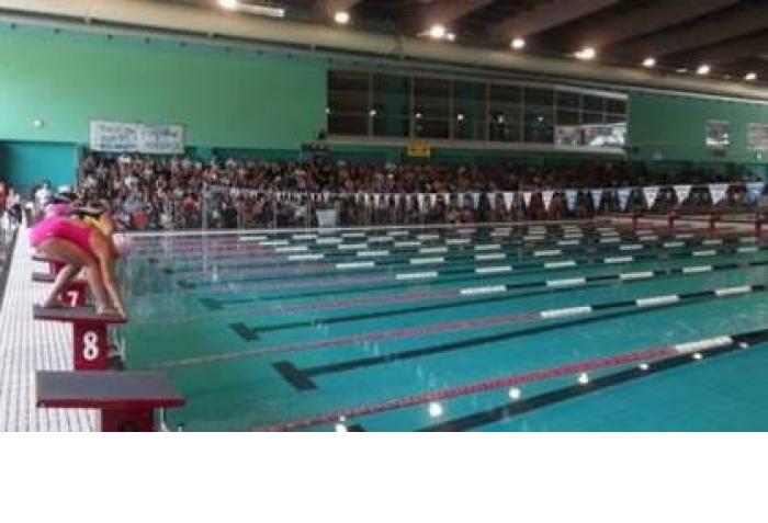 Asi roma news nuoto asi spettacolo nazionale for Piscina zero9 roma