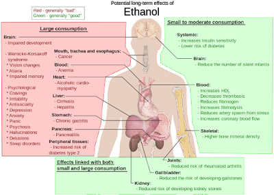 Long Term Effects Of Alcohol (Ethanol)