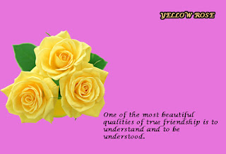free download 2017 top best happy valentines rose day images hd wallpapers gifts romantic pictures pics frame photos with quotes shayari poems messages for husband boyfriend lovers couples cool gif facebook whatsapp bf gf