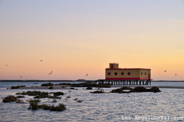 http://fineartamerica.com/featured/lifesavers-building-and-birds-in-fuzeta-portugal-angelo-deval.html