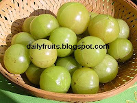 gooseberry, dailyfruits.blogspot.com