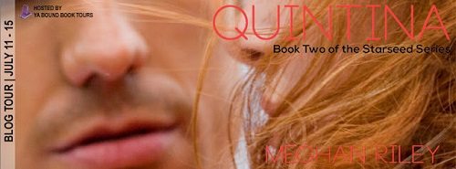 http://anightsdreamofbooks.blogspot.com/2016/07/guest-bloggiveaway-quintina-by-meghan.html