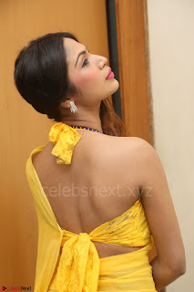 Nishigandha in Yellow backless Strapless Choli and Half Saree Spicy Pics 146.JPG