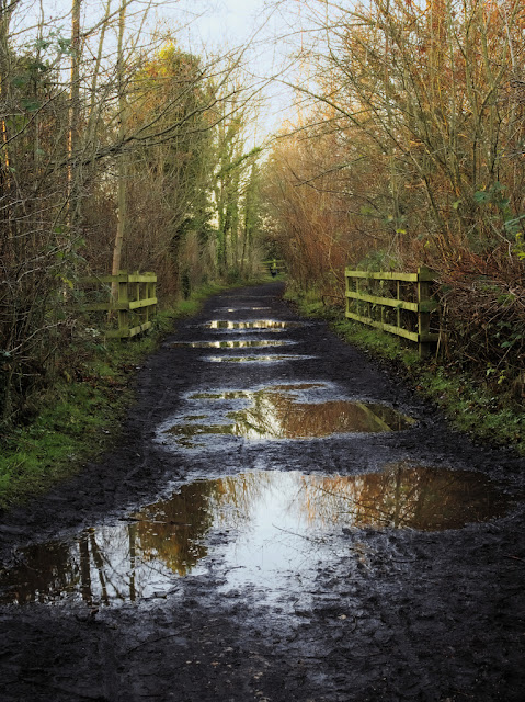 Waterlogged path