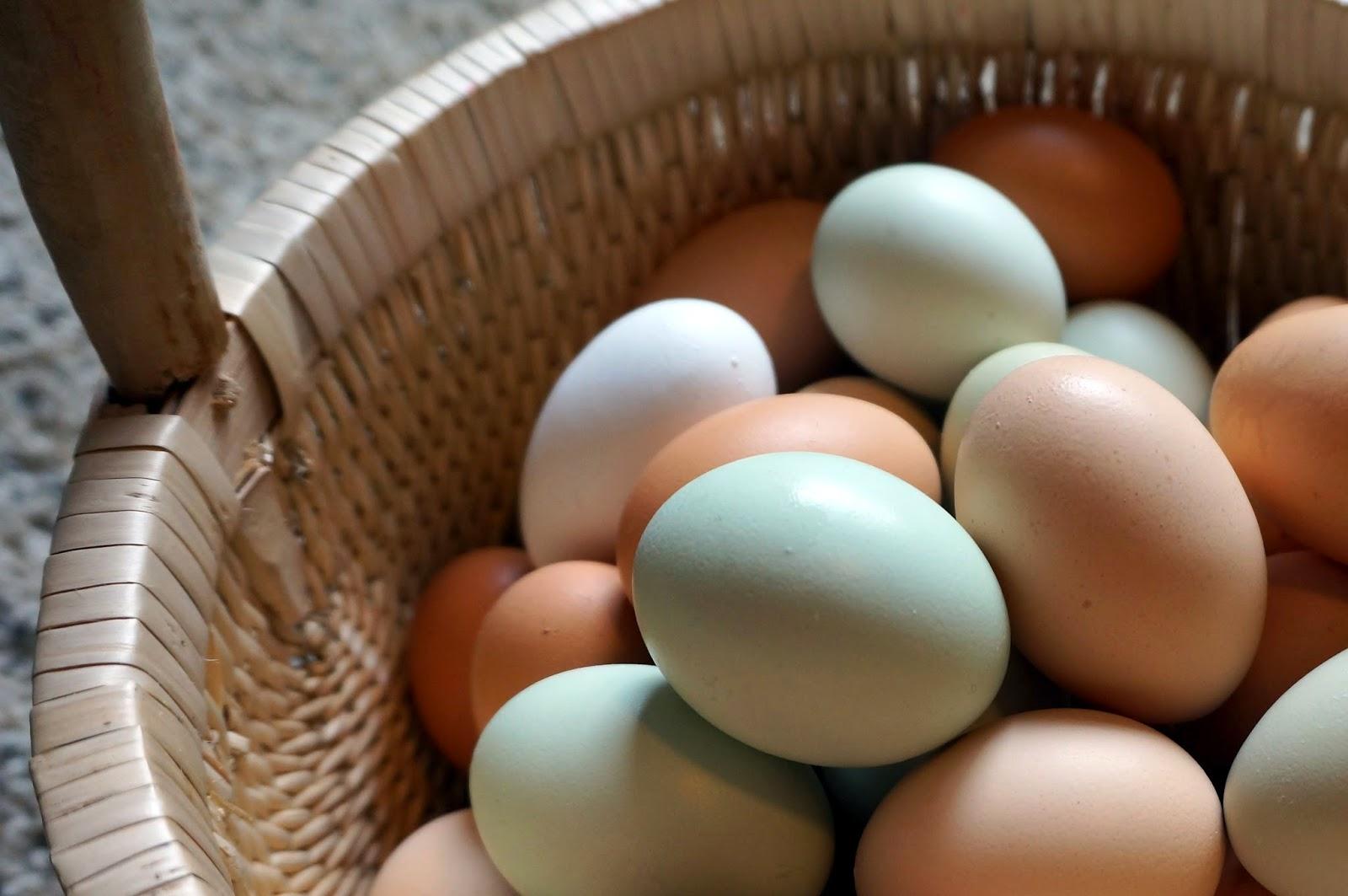 Natural Egg Vs Store