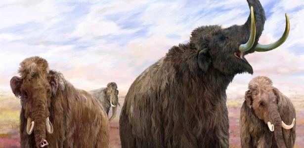 Cientistas Conseguiram Clonar Mamute Congelado e Preservado em Gelo que foi encontrado em uma ilha ao Norte da Sibéria na Rússia?