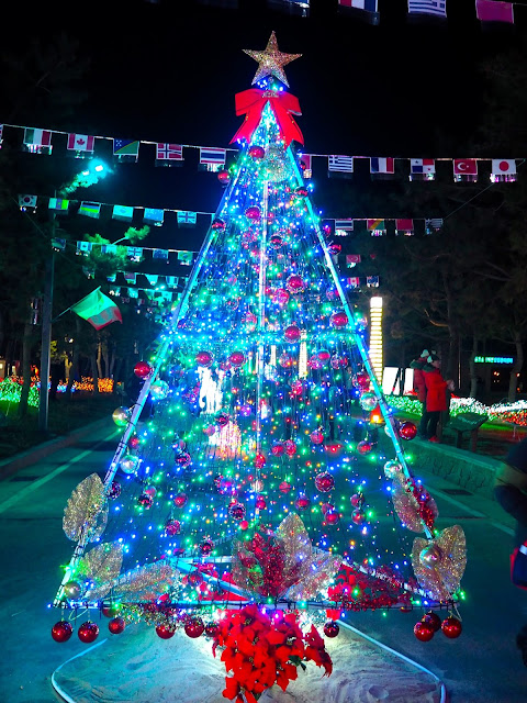 Christmas tree display at the Light Festival at the Yulpo Beach area of Boseong Green Tea Plantation, South Korea