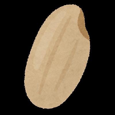 玄米のイラスト(米)
