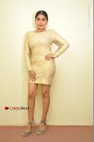 Actress Pooja Roshan Stills in Golden Short Dress at Box Movie Audio Launch  0110.JPG