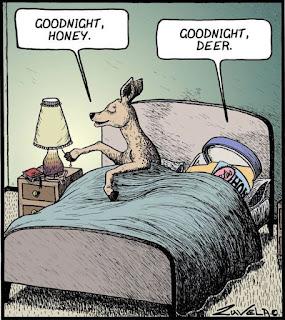 Sängen Vad ska man köpa för säng