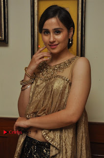 South Indian Celebrities Pos at Love For Handloom Collection Fashion Show  0110.jpg