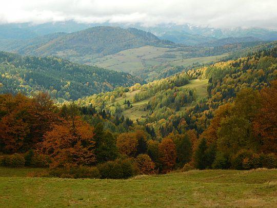 Widok na dolinę Wierchomlanki.