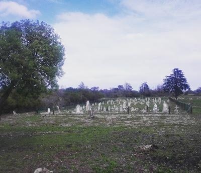 Leper graveyard - Robben Island