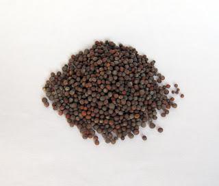 Mustard Seed Black