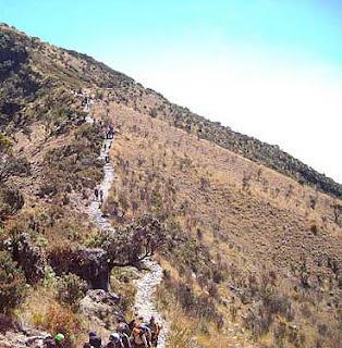 Jalur Cemoro