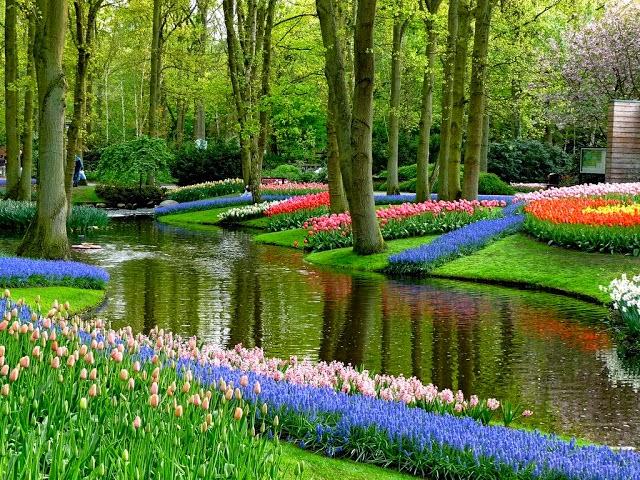 El rincon de un jardin tuliopanes en lisse y jardines de - Jardines de holanda ...